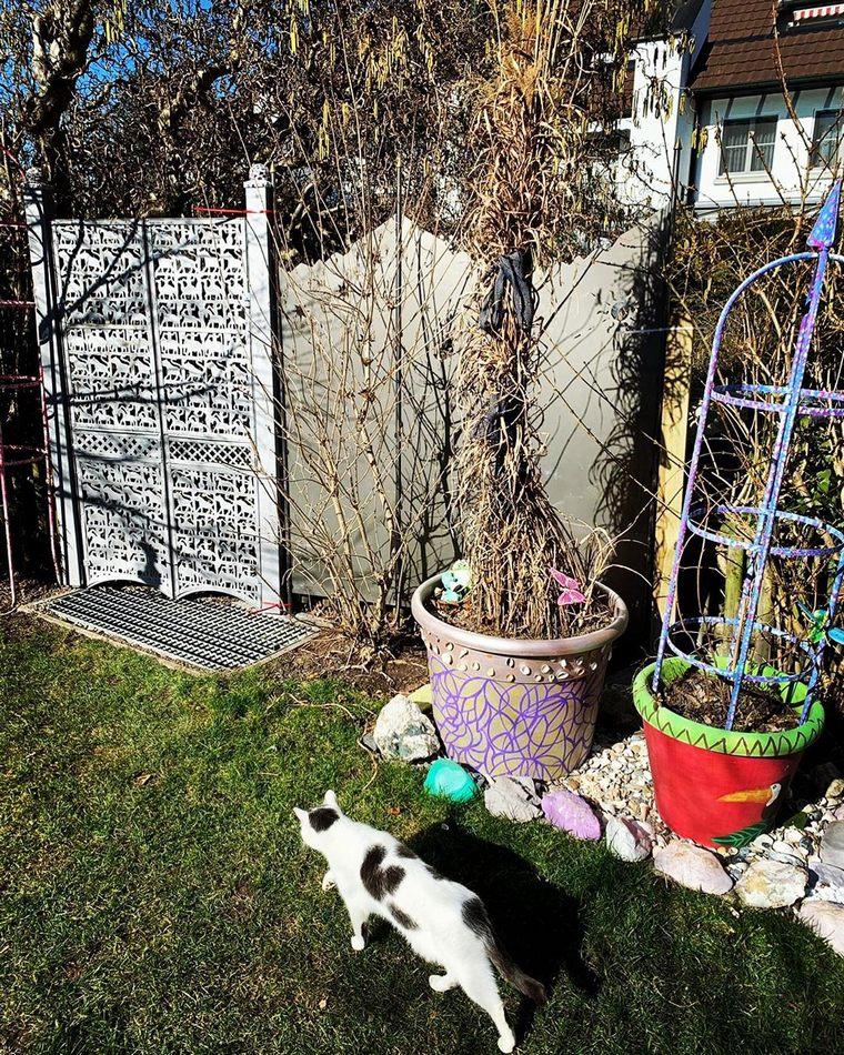 Bohemian garden (41)